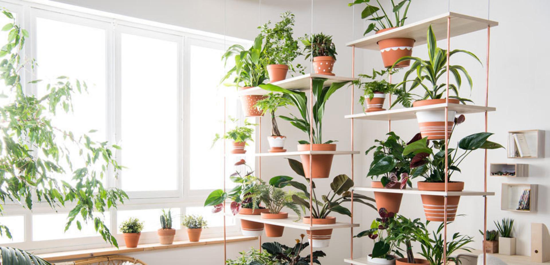 Découvrez ici les étapes pour réaliser un mur végétal. Le mur végétal? C'est la solution idéale pour couper une pièce en deux avec légèreté